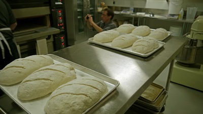 new freedom gluten free bakery vienna loaves rising